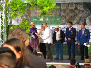 premiu Daniel Ionescu